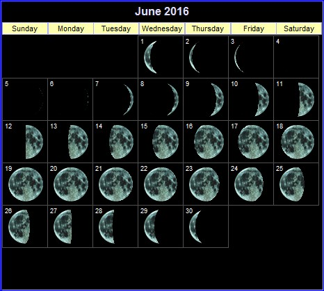 Daily lunar phases for the month